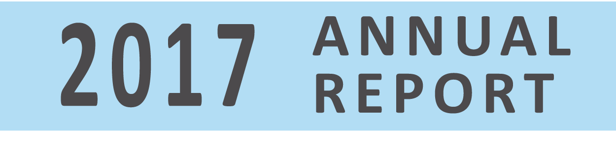 Logo for 2017 Annual Report